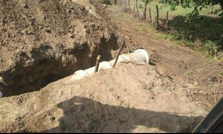 Prefeitura instala bueiros em passagem molhada na comunidade rural do Sanharó