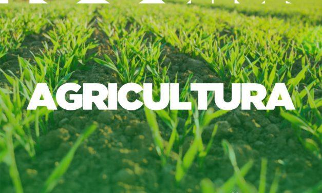 Prefeito de Ouro Velho divulga ações realizadas na Agricultura nos 100 dias de gestão; confira